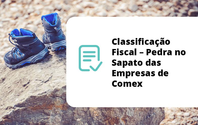 Classificação Fiscal - Pedra no Sapato das Empresas de Comex