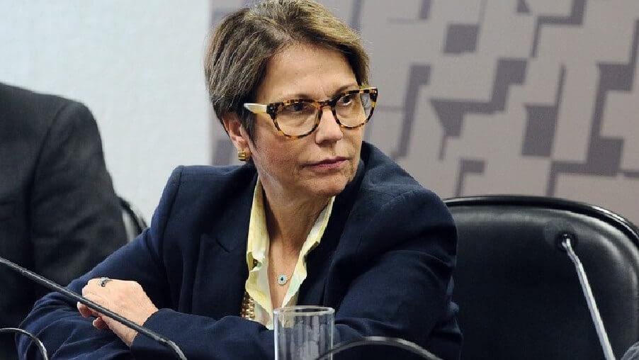 Em viagem à Ásia, ministra quer ampliar participação de produtos agrícolas brasileiros